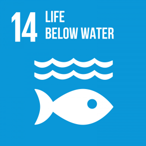 Goal 14 Life below water