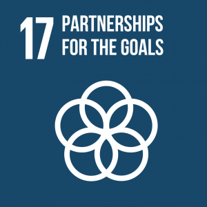 Goal 17 Partnerships for the goals