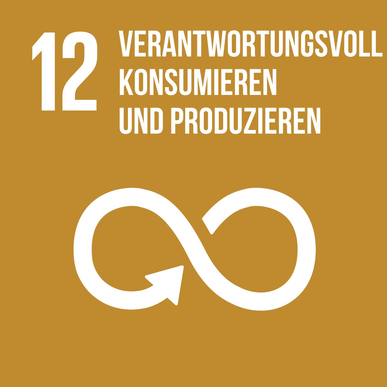 Ziel 12 verantwortungsvoll konsumieren und produzieren