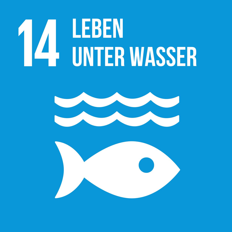 Ziel 14 Leben unter Wasser