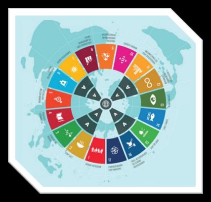SDGs at Stake | Ein pädagogisches Brettspiel für die Anwendung in Schule, Aus- und Weiterbildung